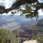 North Rim Canyon