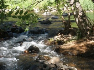 Creek at Rancho Sedona RV Park
