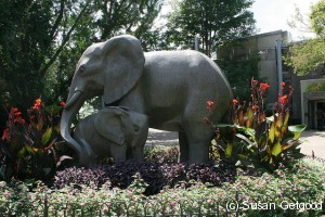 ElephantZoo 300x200 CItyscapes Philadelphia   What To Do, Science & History Geek Edition